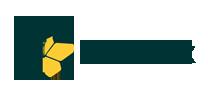 logo starbox